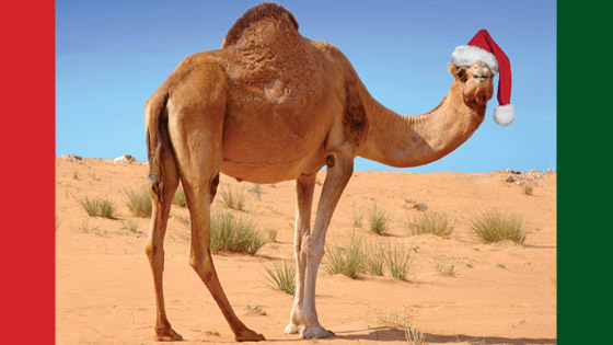 Sahara Men's Christmas Luncheon