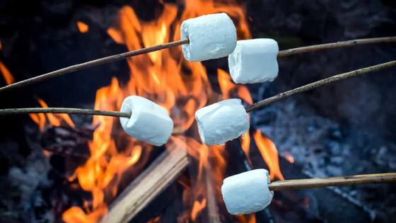 NOCYPAA Summer Kick-Off Bonfire